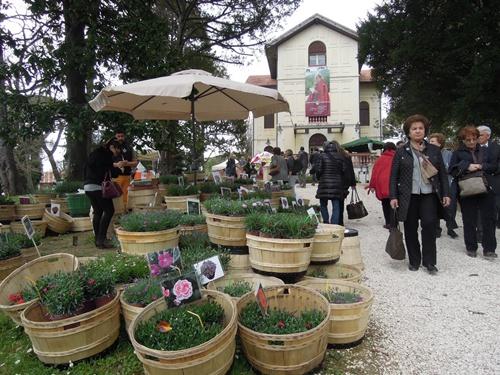 Castel sismondo e piazza malatesta in fiore con giardini d autore