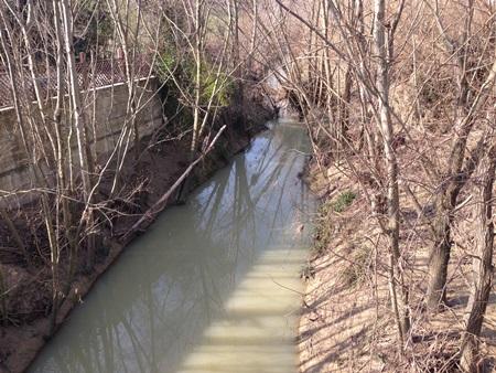 Autorizzazione alla raccolta del legname caduto nell'alveo dei corsi d'acqua del fiume Conca