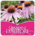 Riccione: Giardini d'Autore Autunno 2014 Mostra mercato di piante insolite e rarità botaniche. Sabato 20 e domenica 21 settembre. Giardino di Villa Lodi Fè