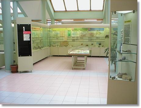 Sale espositive Museo del Territorio