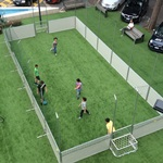 Un calcio nel verde - Delfino Sport Cup