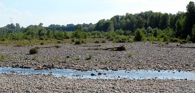 Divieto temporaneo di prelievo idrico dei corsi d'acqua